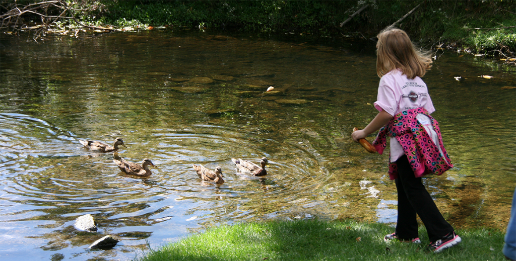 CH_2366-girl-pond